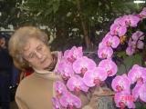 Gerda Altrogge