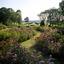 Der Garten von Marihn