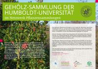 nwps-schild-gehoelzsammlung-humboldtuniversitaet-a0-151214-2a