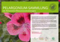 nwps-schild-a2-pelargonium-laach