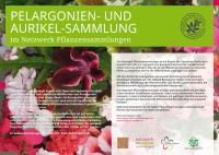 nwps-schild-a2-pelargonium-primula-kaltenbach - Kopie